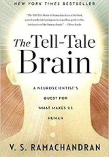 The tell-tale brain : a neuroscientist's quest for what makes us human / V.S. Ramachandran.